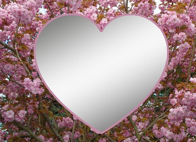 heart-256590_640