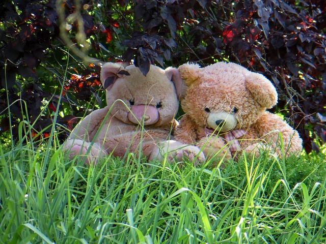 teddy-625304_640