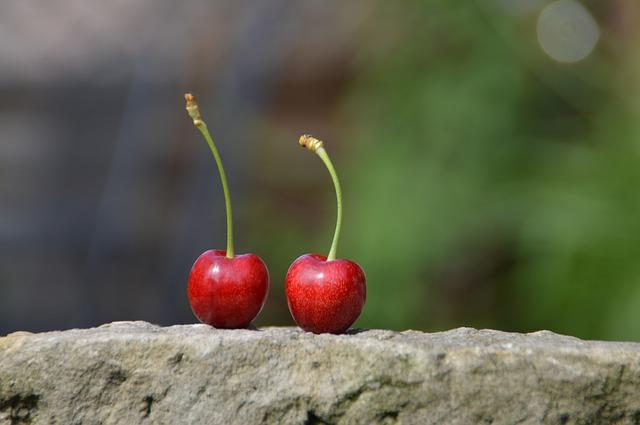 cherry-829540_640