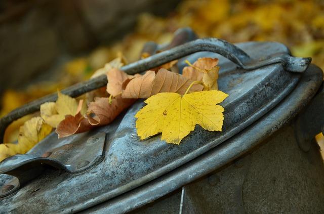 autumn-1013608_640