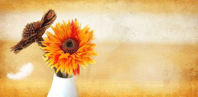 dried-flowers-675763_640
