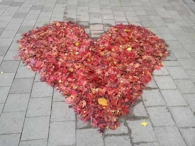 love-235563_640
