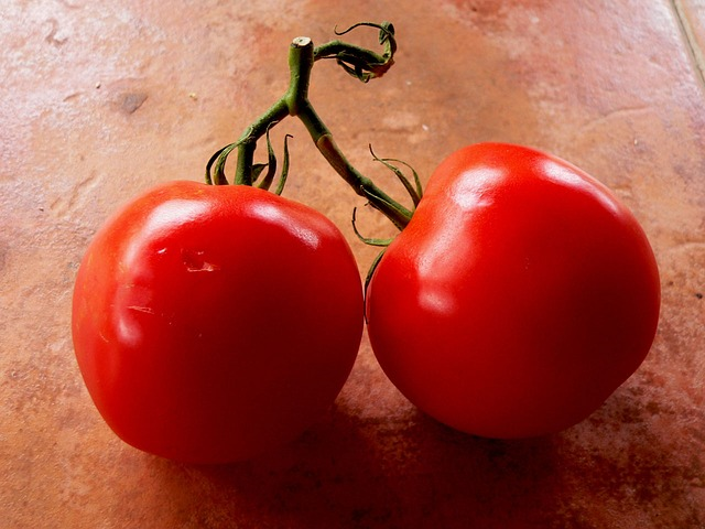 tomatoes-14854_640
