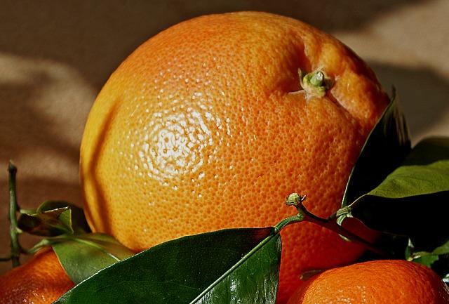 mandarins-403326_640 (1)