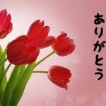 【長文】誕生日を迎えました!起業当時の振り返り